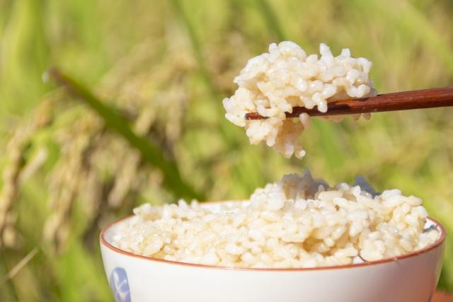 【米一合のカロリー】ごはんの米一合は太る!?おかゆとカロリー糖質を比較