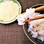 もち麦は太る!?カロリーと糖質を白米や玄米と比較