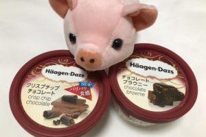 ハーゲンダッツを食べると太る!?チョコモナカジャンボとカロリーと糖質を比較