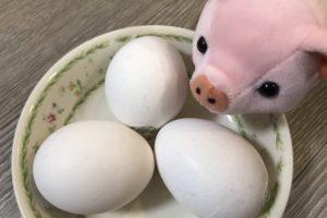 【卵のカロリー】卵は太る!?ゆで卵など調理法別にカロリー糖質を比較