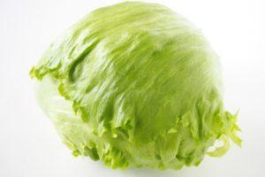 【レタスのカロリー】レタスは太る!?キャベツや白菜とカロリー糖質を比較