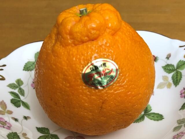 【デコポンのカロリー】デコポンは太る!?みかんやオレンジとカロリー糖質を比較